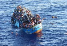 Migranti_space_sheperd,closeupengineering.it