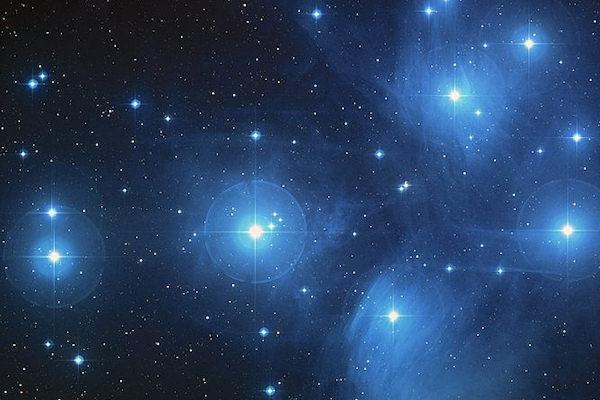 stelle pleadi