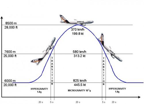 disinformazioni, zanichelli, volo parabolico