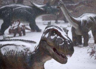 I dinosauri vissuti nella parte opposta della galassia
