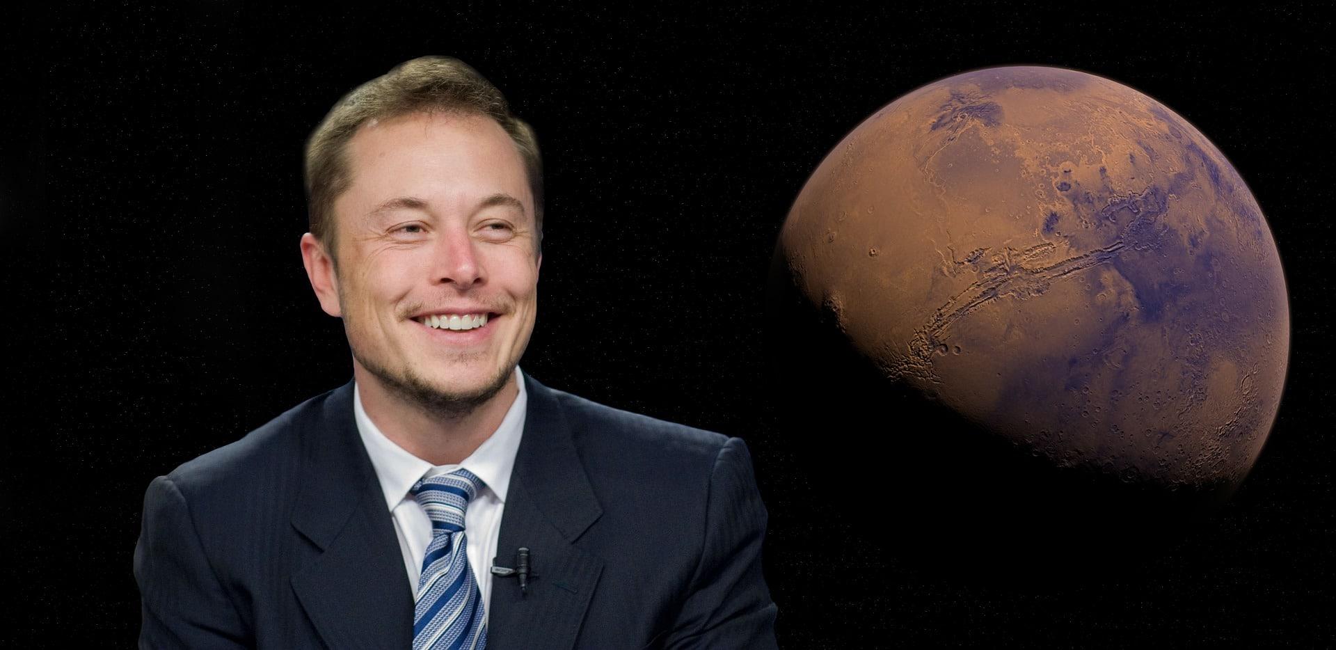 Elon Musk videogame
