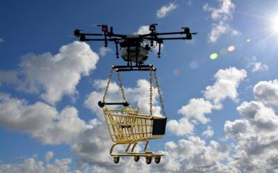 Droni Google vs uccelli, azienda sospende il servizio di consegne aeree
